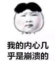 152210965406220ec215325.jpg