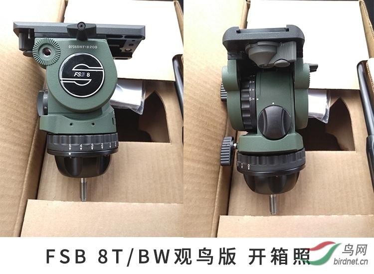8TBW-09.JPG