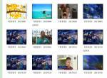 (原创)宁波电视台一套新闻节目:《看看看》录播链接(每天更新)